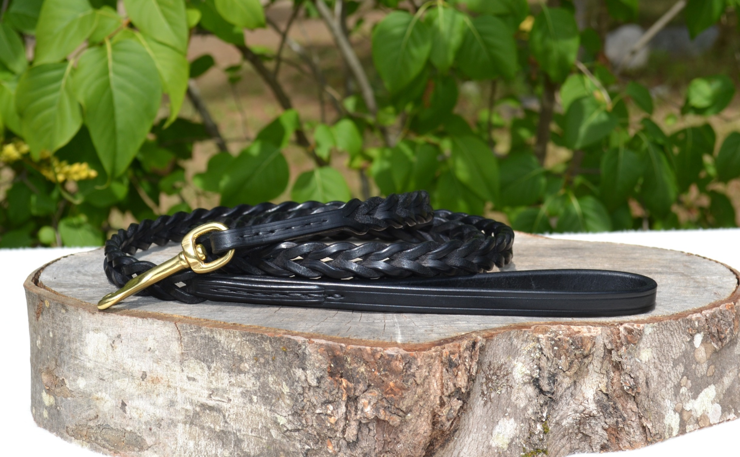 "3/8"" x 6' Black Braided Leash ($90)"