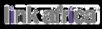link-africa-logo.png