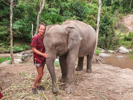 Everything You Need To Know About Travelling To Thailand: Why Thailand Changed My Life