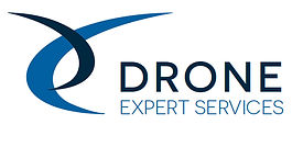 LOGO DRONE EXPERT SERVICES