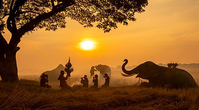 thailand-countryside-silhouette-elephant