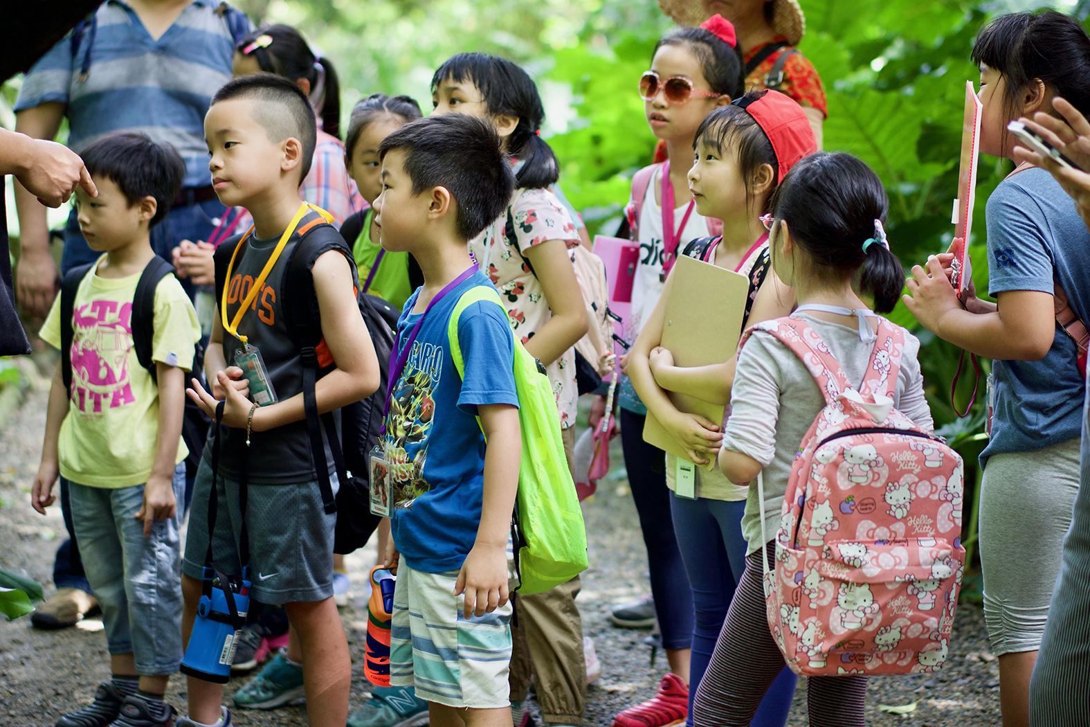 自然生態探索營隊