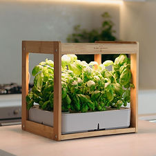ecokitchen-smart-garden-home-garden-urba