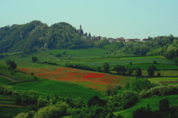 Blick auf Montemarzino