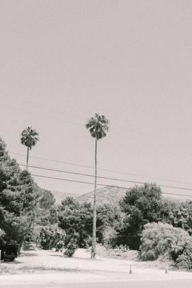 luke-cleland-photography-1-7.jpg