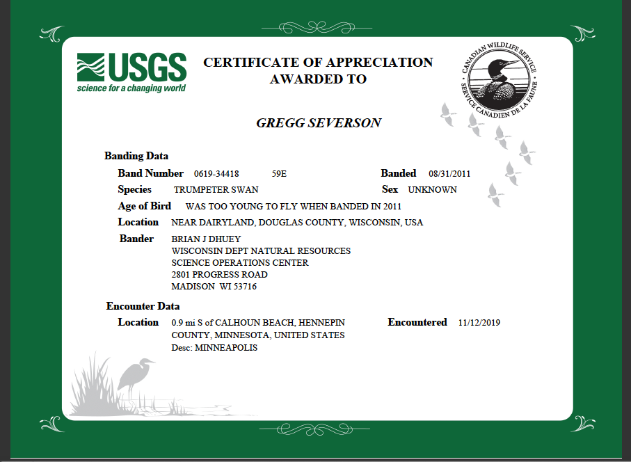 An image of a certificate of appreciation from the USGS for reporting the banding data.  It says that bird was banded on 8/31/2011 when it was still too young to fly near Dairyland, Douglas County, WI.