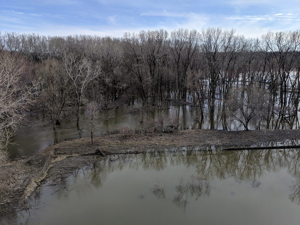 A view looking down into the Minnesota Valley Wildlife Refuge, showing a forested area inundated by floodwaters