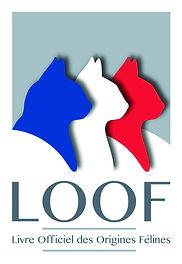 LOGO LOOF.jpg