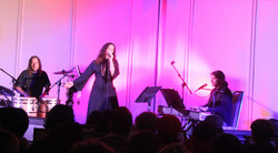 מיטל טרבלסי - הופעה (9)