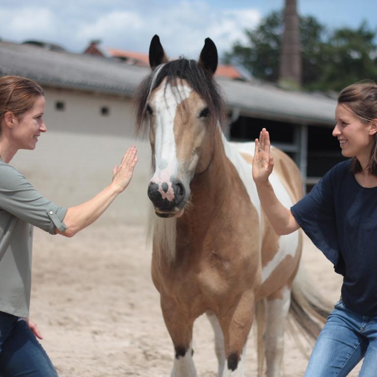 Körpersprache trifft Pferdesprache