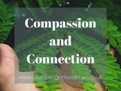 Compassion and Connection