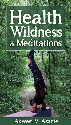 Akwesi M Asante   Health Wildness & Meditation