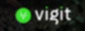 Vigit Logo.png