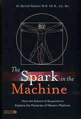 the-spark-in-the-machine-dr-daniel-keown