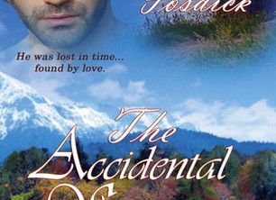 The Accidental Stranger (The Accidental Series, #2) by C.J. Fosdick my review