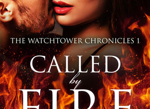The Watchtower Chronicles by Delwyn Jenkins