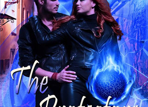 See how it all ends in, The Protectors (The Candi Reynolds Series, 3)