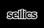 Sellics_edited.png