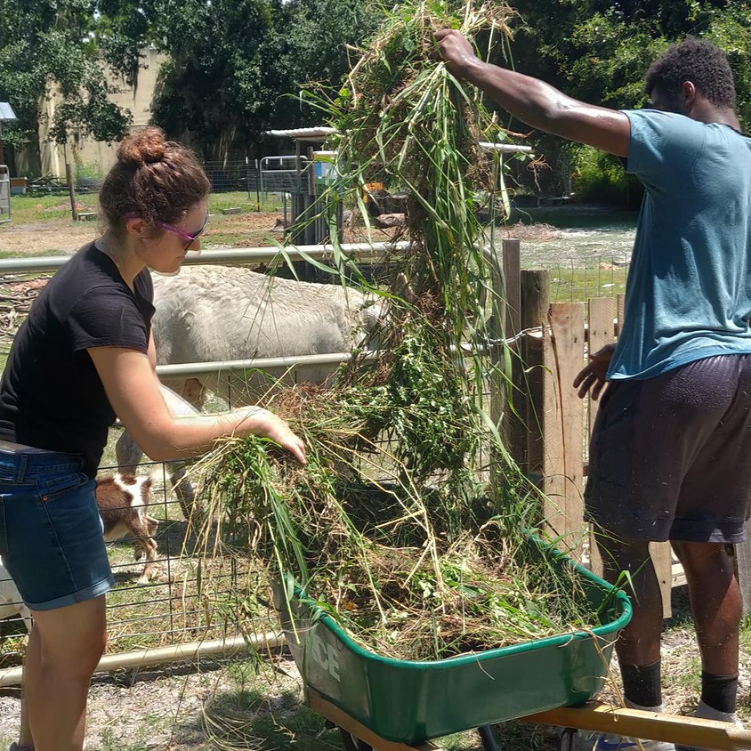 Service Saturday (On a Wedneday) At Do Good Farms