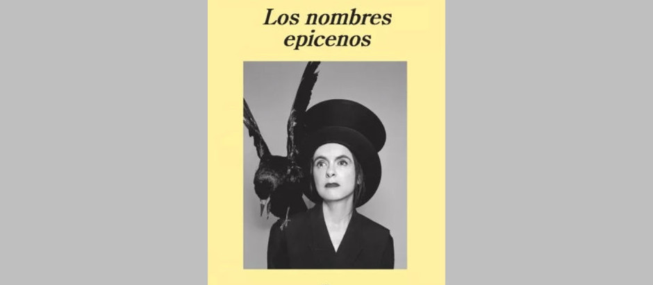 «Los nombres epicenos», de Amèlie Nothomb