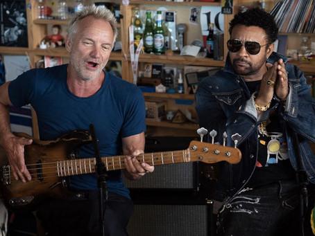 Sting y Shaggy tocando en un escritorio de oficina pública