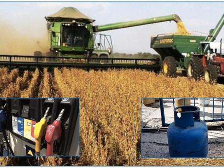 #TarifazoRetardado - Aumento por encima de la inflación tras la cosecha de soja, arroz y maíz