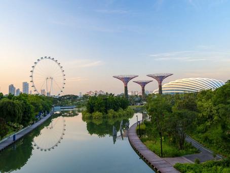 Ciudades naturales y hormigueros artificiales