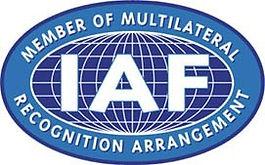 IAF Smaller.jpg