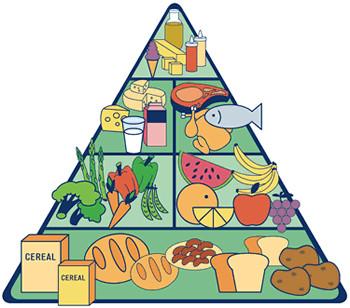 che-sia-benedetta-la-moda-la-piramide-alimentare