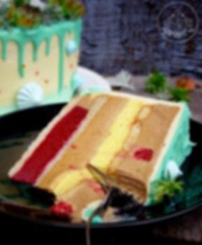 Torta sa malinama i plazma keksom.jpg