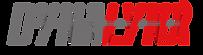 DynaLynx Enschede logo