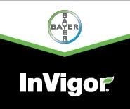 Invigor
