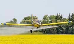 Roland Air Spray