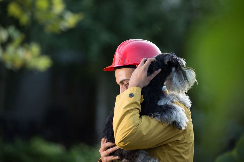 Aoifa_ACEs_Animal_Rescue