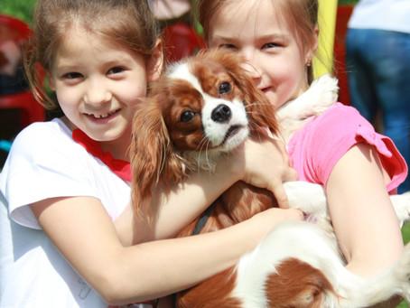 7 правил общения детей и собак