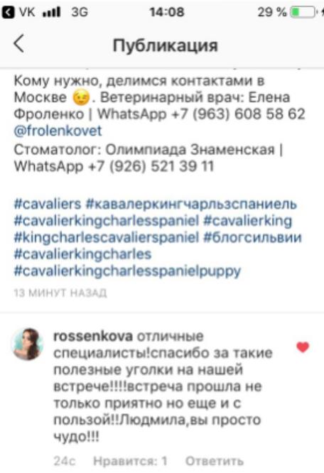 Отзывы Кавалер встреча 2019