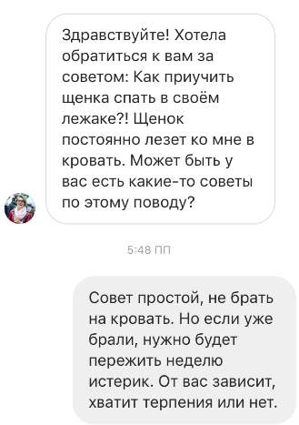 Сайт cavalierking.ru