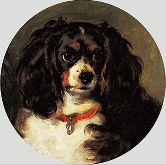 Dash (Queen Victoria's), 1836