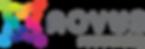 Novus Resourcing Logo 300dpi.png