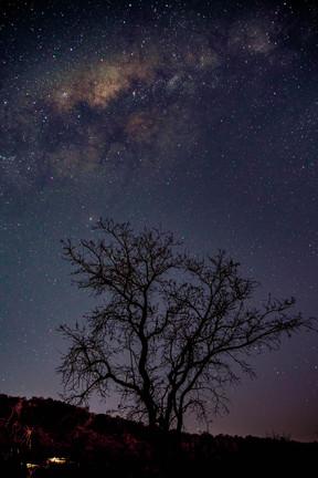 Sky by Night
