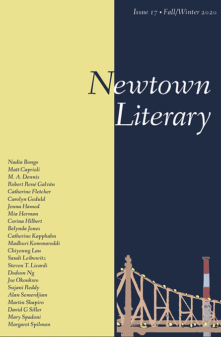 nlj17_cover.png