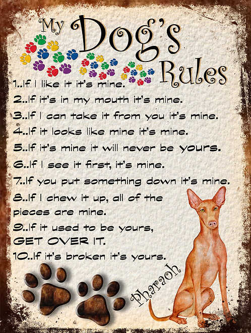 Pharaoh Gift My Dogs Rules Retro Metal Sign / Fridge Magnet Shabby Chich