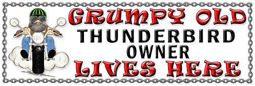 Grumpy Old Thunder Bird Owner,  Humorous metal Plaque 267mm x 88mm