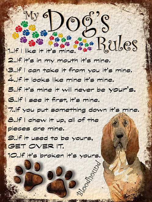 Bloodhound My Dogs Rules Retro Metal Sign / Fridge Magnet Shabby Chic