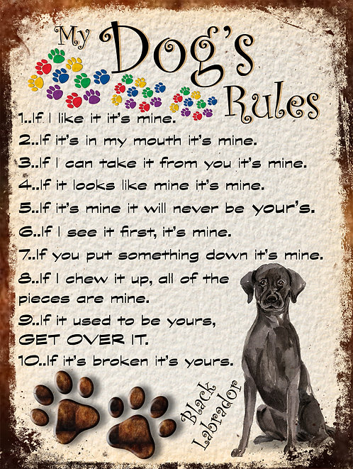 My Dogs Rules Black Labrador, Retro Metal Sign / Fridge Magnet
