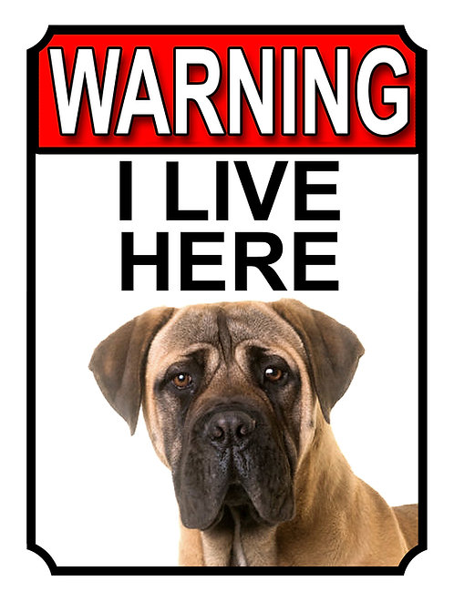 Bullmastiff Theme Warning I Live Here Dog Breed  Garden Yard Gate Sign 1322H1