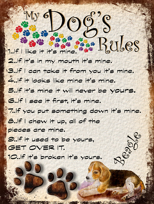Beagle My Dogs Rules Retro Metal Sign / Fridge Magnet Shabby Chic Gift