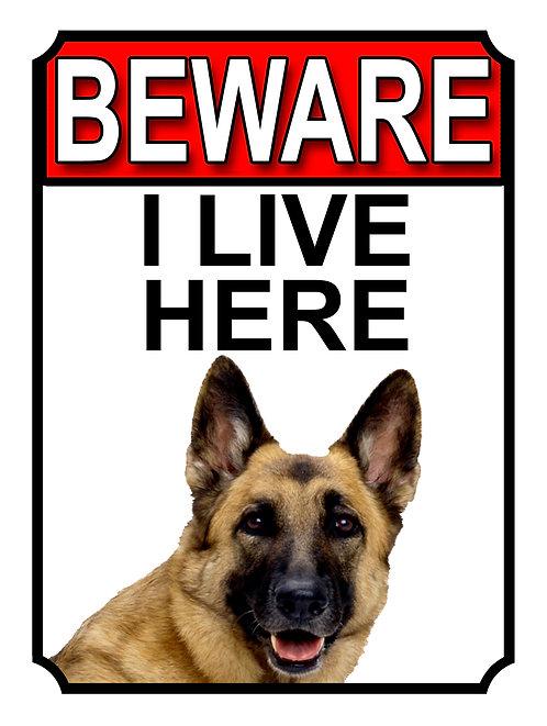 German Shepherd Beware I Live Here Dog Breed  Garden Yard Gate Sign 1066H1