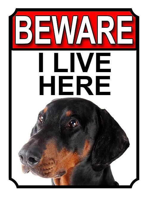 Doberman Beware I Live Here Dog Breed  Garden Yard Gate Sign 1058H1