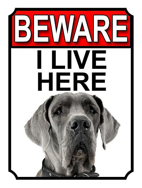 Great Dane Beware I Live Here Dog Breed  Garden Yard Gate Sign 1071H1